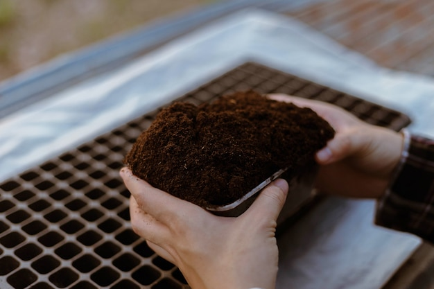Gardening concept two hand of a gardener inserting rich black soil to nursery trays preparing for growing seedlings.