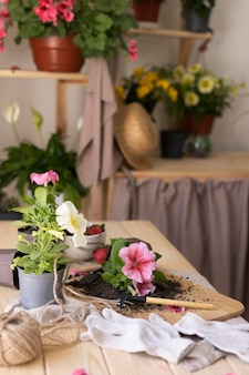 Gardening concept with flowers on table