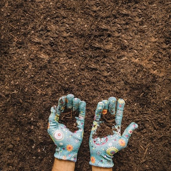 Gardening concept with hands holding soil