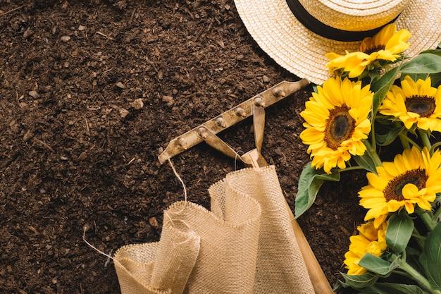 Концепция садоводства с граблями и подсолнухами