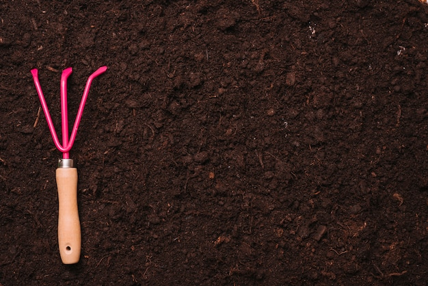 Gardening concept with rake on soil