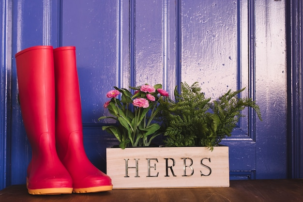 Gardening concept with red gumboots
