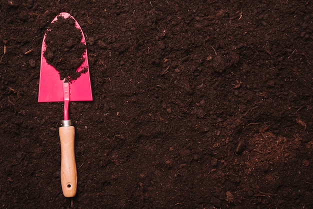 Gardening concept with shovel on soil