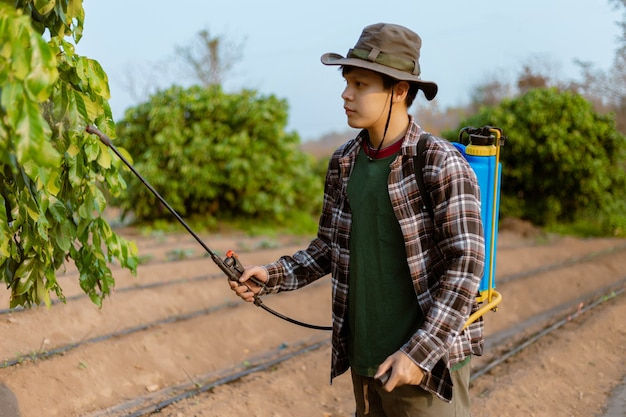 Gardening concept a young male farmer spraying a chemical pesticide for preventing the crops from the pests.