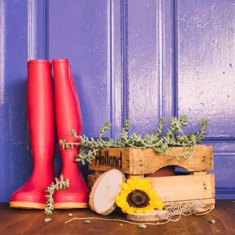 Gardening decoration with gumboots