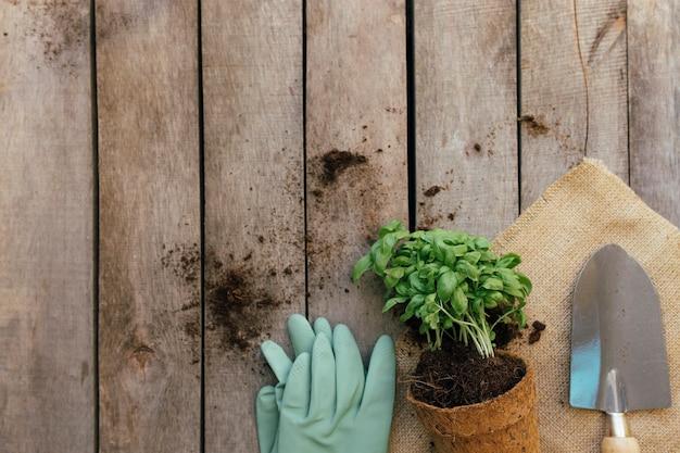ガーデニング趣味のコンセプト。木製の背景にエコポット、シャベル、手袋を植えます。