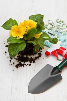 Gardening tool and colored flower