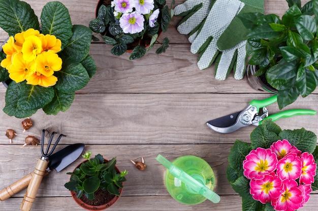 Садовые инструменты и цветы