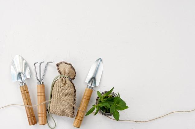 ガーデニングツールと白い背景、コピースペースの植木鉢の緑の植物