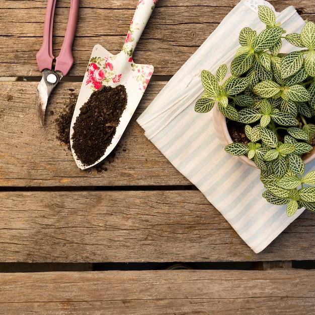 Gardening tools arrangement on wooden background
