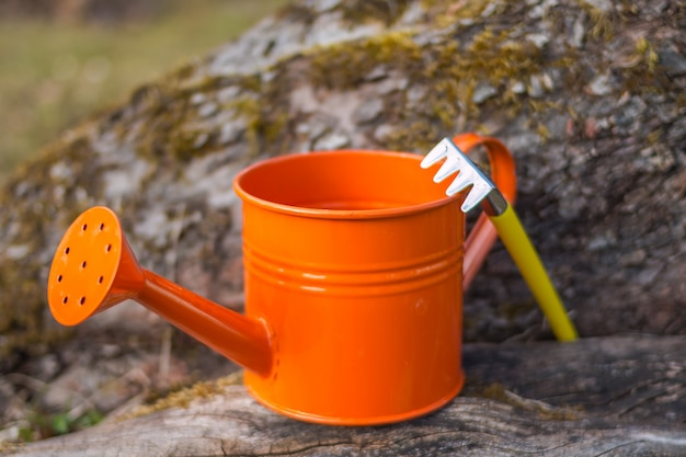 Gardening tools, equipment.garden supplies.spring season.rake and scoop toys isolated.colorful kids garden tools. copy space.orange watering can and a small rake