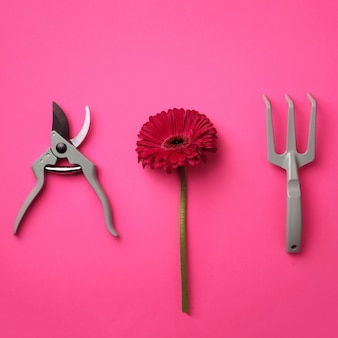 Gardening tools, flower on pink punchy pastel background.
