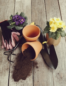 Gardening tools and flower pot on wooden table