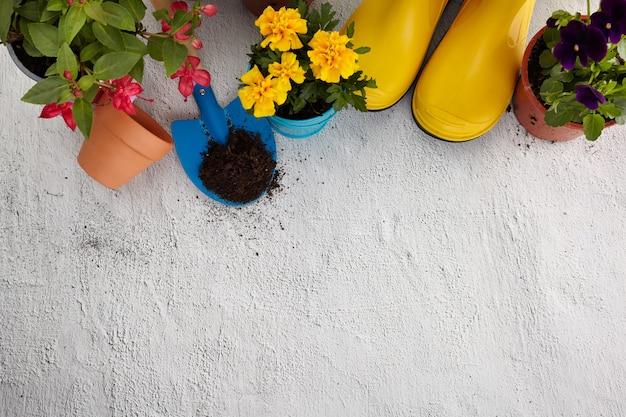 포장 도로에 원예 도구, 꽃 및 물을 수 있습니다. 봄 정원 작품 개념. 위에서 캡처 한 여유 공간이있는 레이아웃. 평면도, 평면 누워.