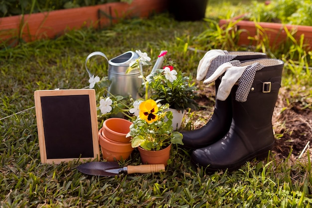 Gardening tools and flowers on ground with blank blackboard