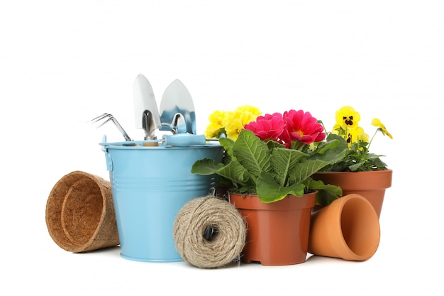 Gardening tools and flowers isolated on white isolated