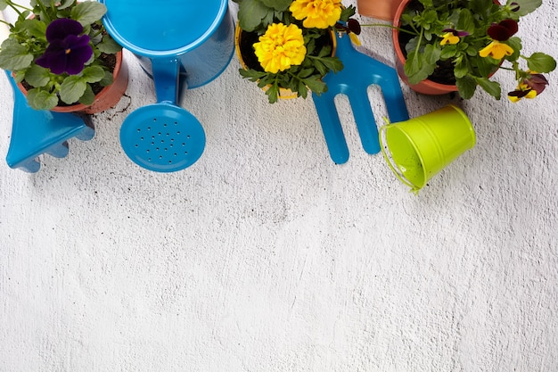 Gardening tools, flowers on pavement. spring garden works concept. layout with free space captured from above.