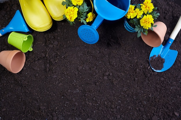 Gardening tools, flowers on soil. spring garden works concept. layout with free space captured from above.