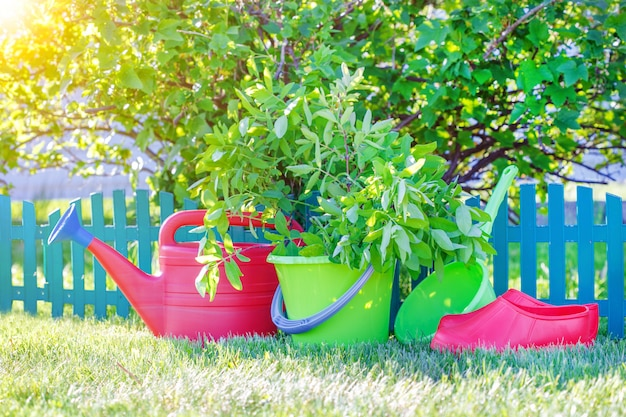 Gardening tools on the green grass in the garden.