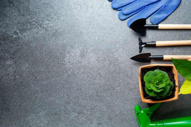 원예 도구는 정원을 위한 여러 도구와 디자인을 위한 배너가 있는 꽃입니다. 집에 머물기 위한 농업 도구 후비를 위한 상단 보기 공간.