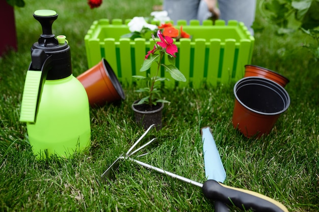 Gardening tools for plants care, closeup view, nobody. gardener or florist equipment. watering spray, hoe and pruners on the grass near the flower bed and flowerpots, summer hobby, garden