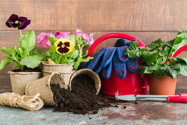 Gardening tools; rope; watering can; gloves on concrete backdrop against wooden wall