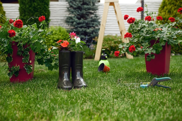 Gardening tools and rubber boots, nobody. gardener or florist equipment. watering spray, hoe and pruners on the grass near the flower bed and flowerpots, summer hobby, garden