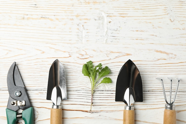 Gardening tools and sprout on wooden table, space for text