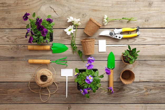 Gardening tools on vintage wooden table.