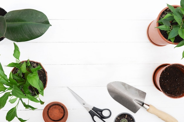 Gardening tools on a white wooden table
