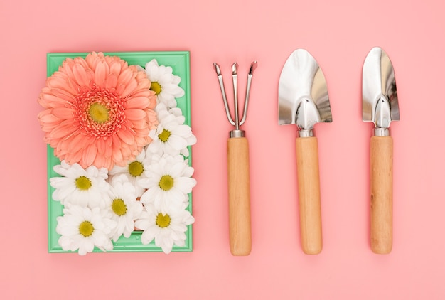 Gardening tools with daisies and gerbera flowers