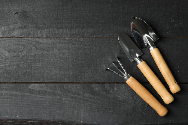 Gardening tools on wooden background, top view