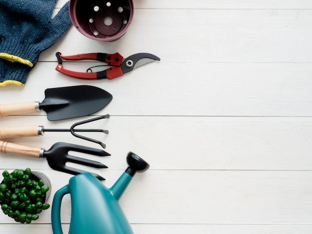 Gardening tools on wooden background.