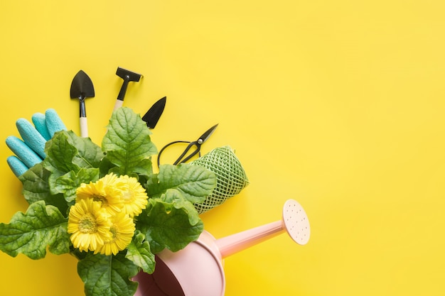 Gardening with yellow gerbera, tolls and garden flowers plant on yellow.