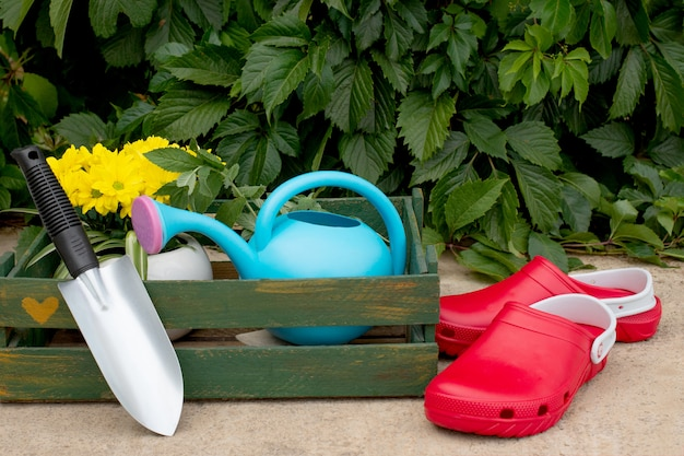 Gardening. work in the garden. tools, watering can and flower in a pot on a background of green leaves. copy space.