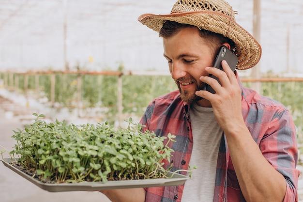 Гарднер с микрозеленью в своей теплице