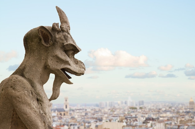 Gargoyle close up on notre dame cathedral church in paris, france
