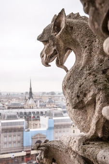 Gargoyle at ledge wall in church not-re dame in paris