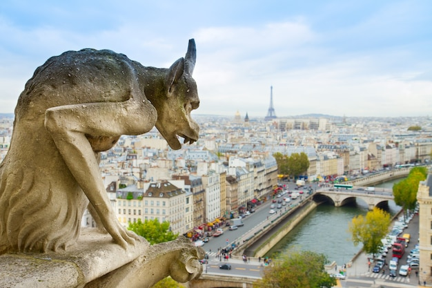 Gargoyle of paris on notre dame cathedral church, france