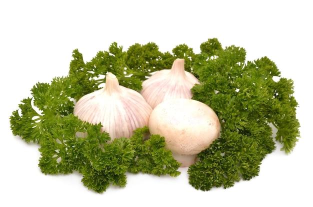 흰색 표면에 마늘과 버섯
