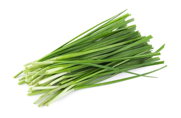 Garlic chives isolated on white surface