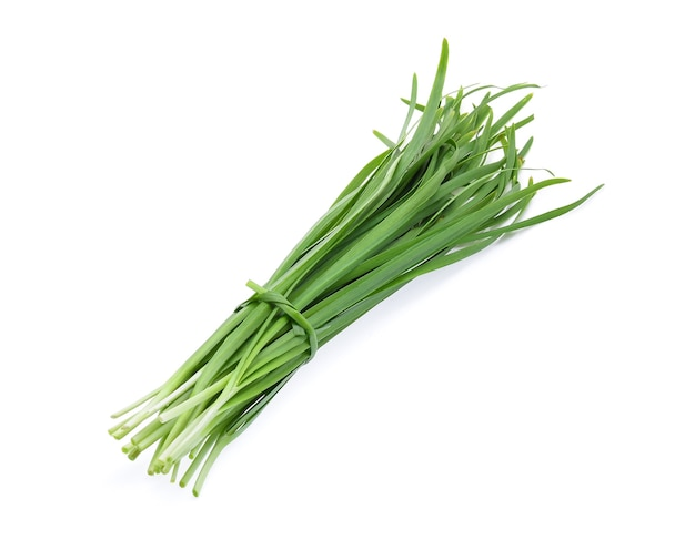 Garlic chives isolated on white