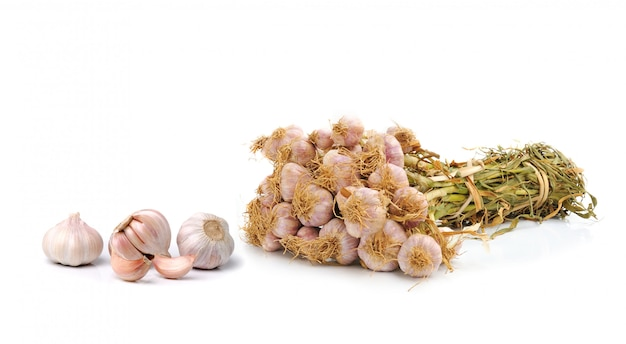 Garlic isolated on white space