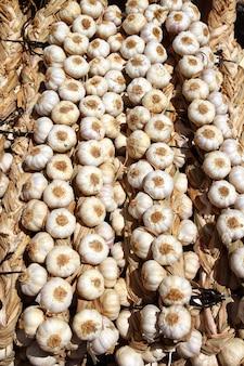 Garlic rows food