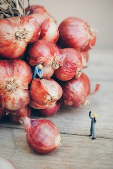 Garlic with working dolls
