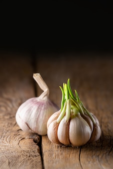 Garlic on a wooden table. heads of garlic on a dark. beautiful black on a wooden board. seasoning. good for your health