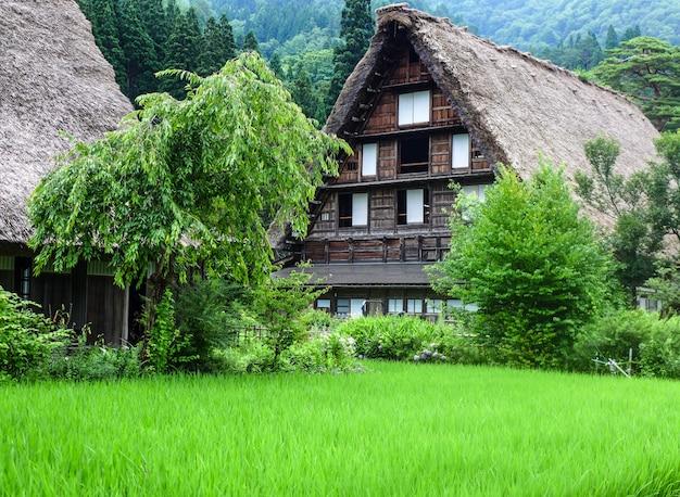 Gassho-zukuri house, historic village of shirakawa-go in summer, japan
