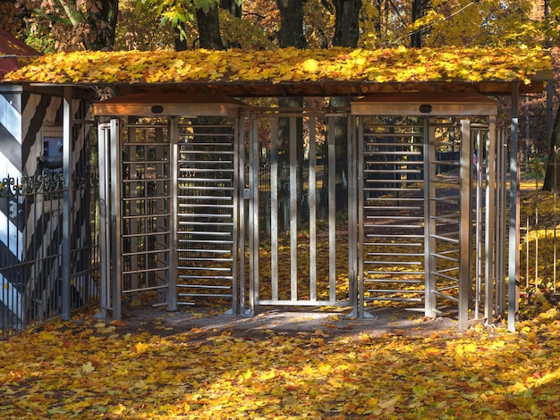 Gates to autumn park.