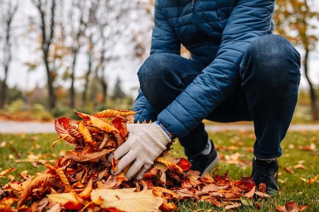 秋に落ち葉を集める。季節の庭仕事。裏庭の掃除。葉を集める。