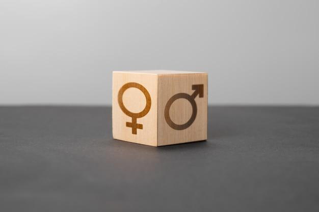 남녀 평등과 차이 개념적 이미지 나무 블록 복사 공간에 남성과 여성의 상징